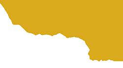 Vento adv Logo